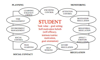 """The workshop """"Motivation and Self-Regulated Learning – from Theory ..."""